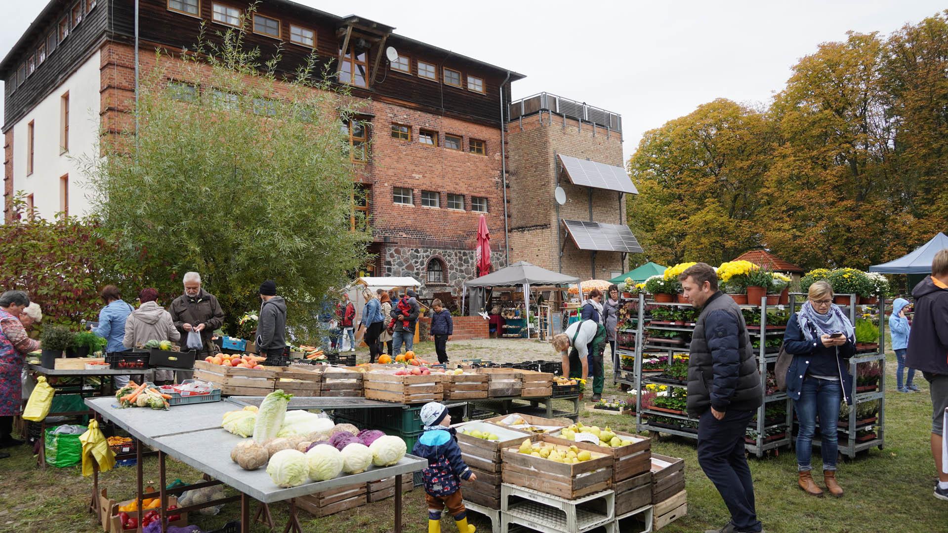 Herbstmarkt am Ökospeicher