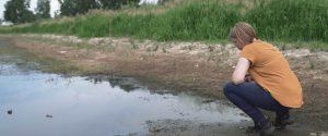 Wo das Grundwasser in den Himmel guckt
