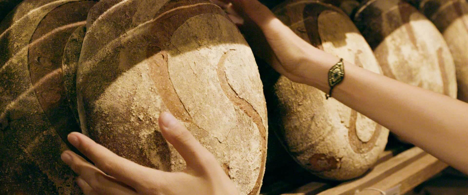 Ökofilmtour online: Schönes neues Brot